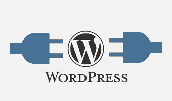 WordPress Plugins WordPress Themes